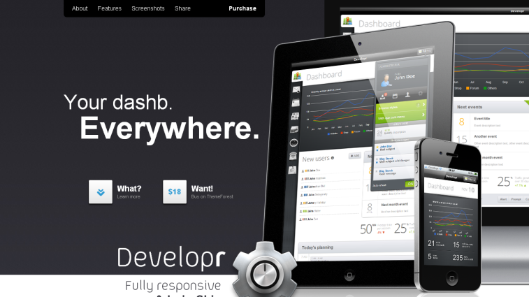 developer_wordpress1