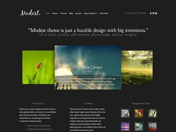 modest wordpress1