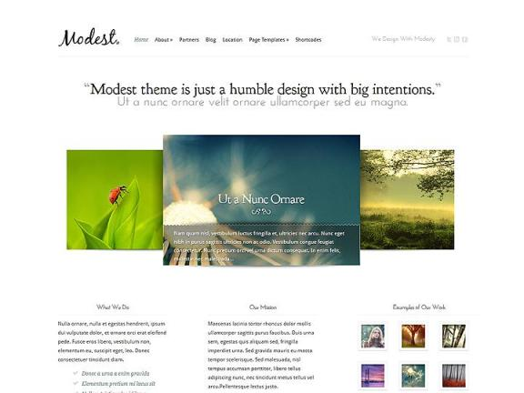 modest wordpress3