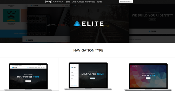 elite wordpress themes