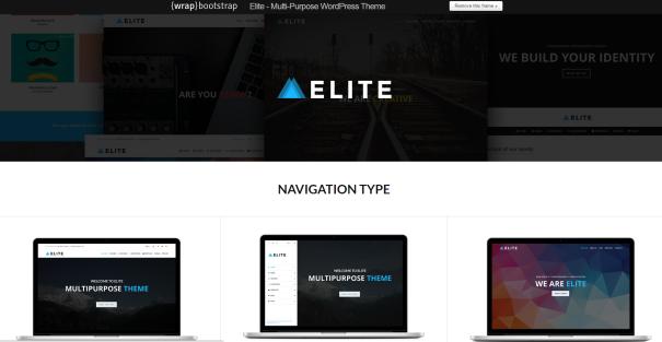 elite wordpress themes